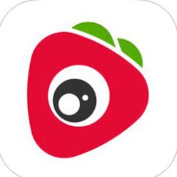草莓视界手机版