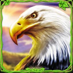 猎鹰模拟器中文版 v1.3 安卓版