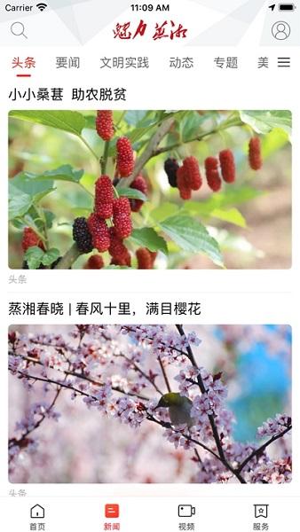 魅力蒸湘官方版 v1.0.0 安卓最新版