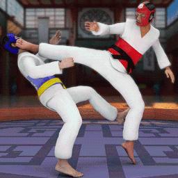 跆拳道格斗游戏