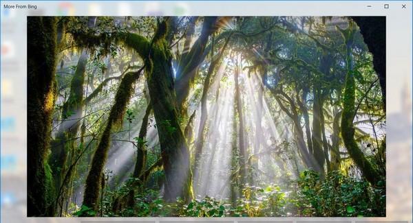 windows spotlight tools电脑版(win聚焦工具) v1.7.1 免费版