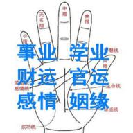 皇�O手相�A�y系�ypc版 v4.2 正版