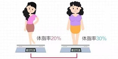 测试体脂率的app有哪些?体脂率app推荐-测体脂率软件