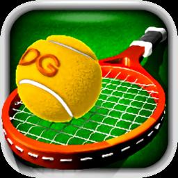 3d网球中文版 v2.3.3 安卓版