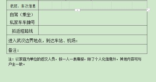 武汉在外人员返汉申请表电子版 word版