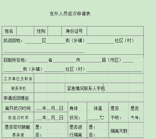 武汉在外人员返汉申请表