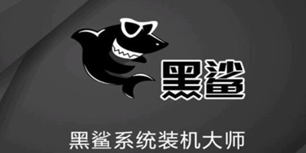 黑鲨装机大师电脑版