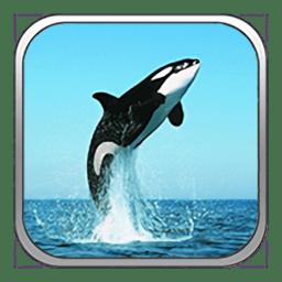 海底世界vr完整版 v2.0 安卓版