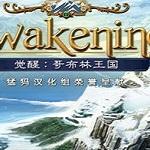 觉醒3哥布林王国电脑版