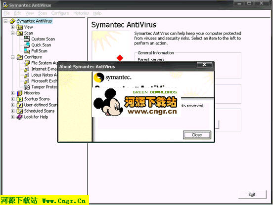 Symantec AntiVirus Corporate Edition 10.1.6.6000_英文版 跨平台病毒防护